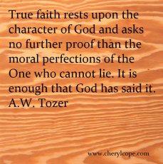 Tozer faith - 3
