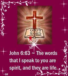 John6.63