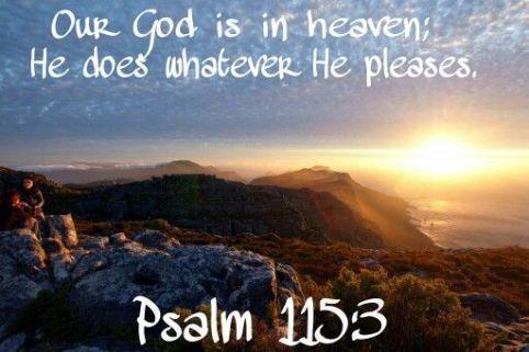 Psalm 115.3