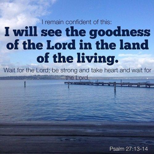Psalm 27.13