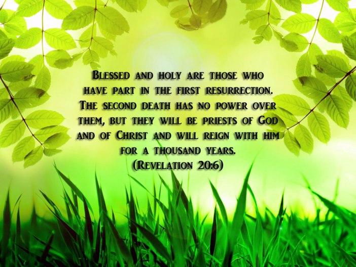 revelation 20-6