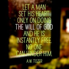 Tozer Fear 2