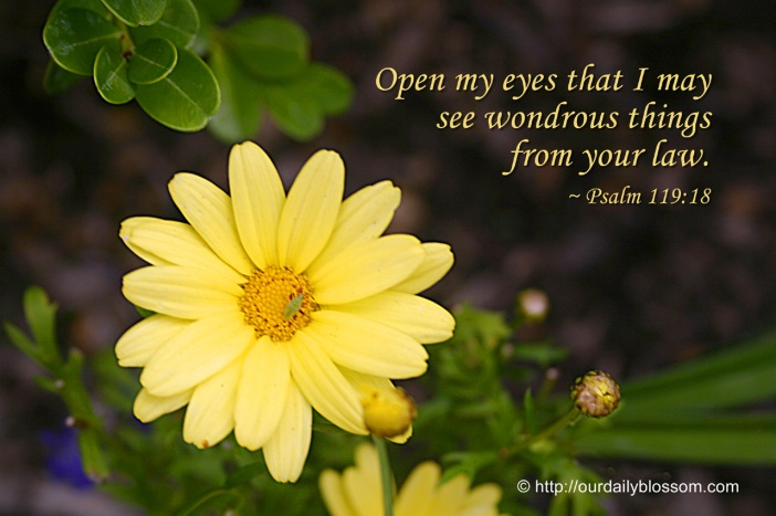open-my-eyes