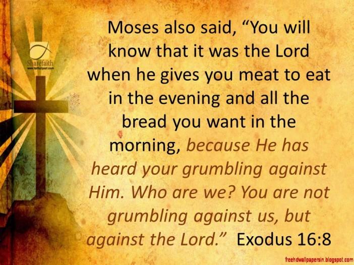 exodus-16-8