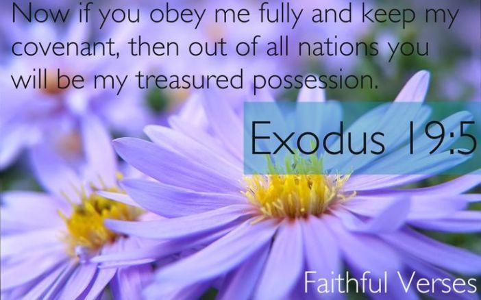exodus-19-5