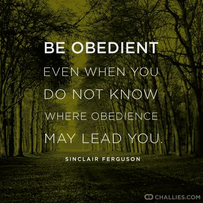 obedience-8