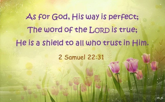 2 Samuel 22.31