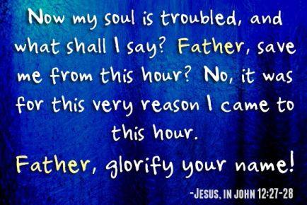 John 12.27