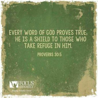 Proverbs 30.5