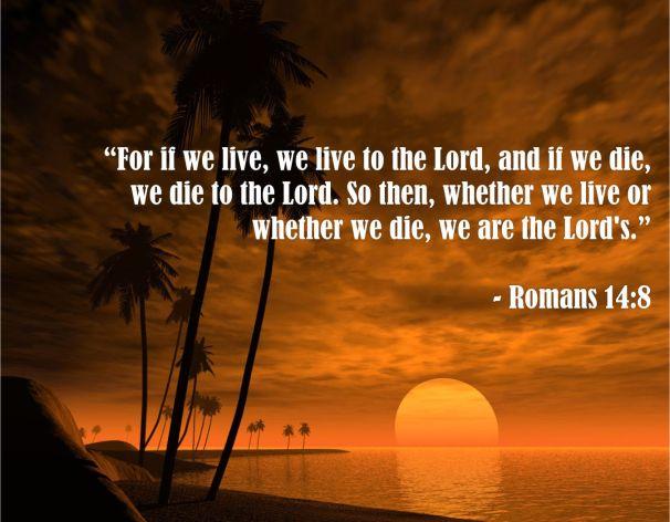 Romans 14.8