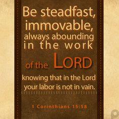 1 Corinthians 15.58
