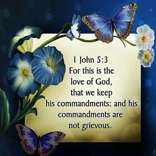1 John 5.3