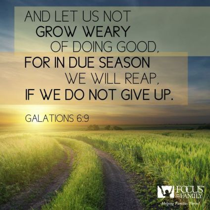 Galatians 6.2