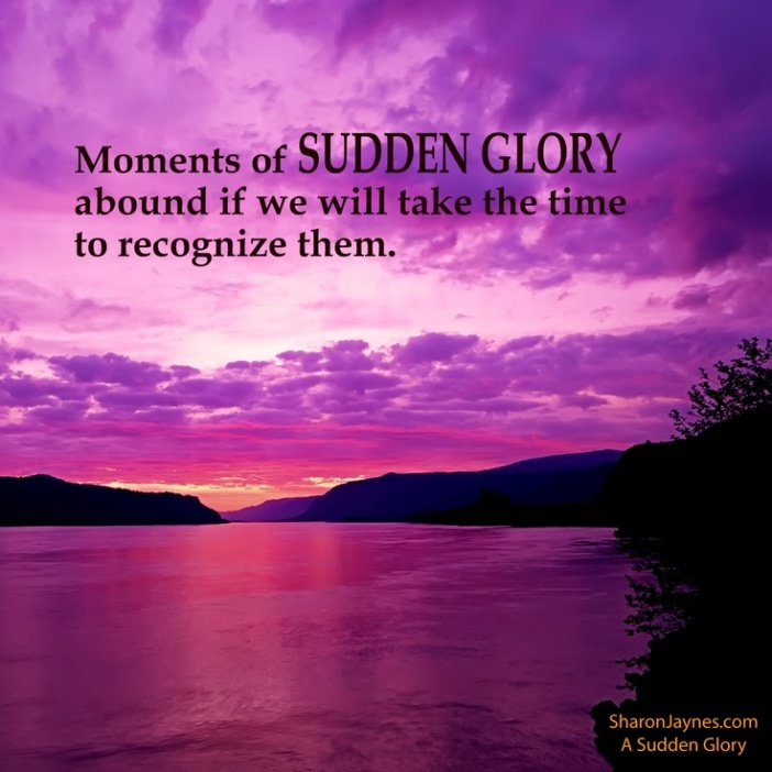 Glory 12
