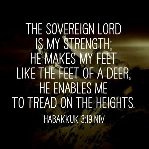Habakkuk 3.19