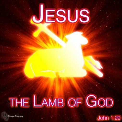 John 1.29a
