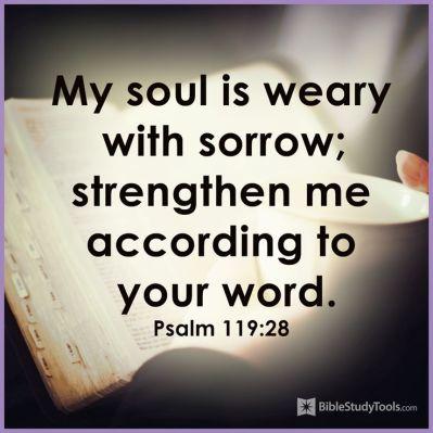 Psalm 119.28