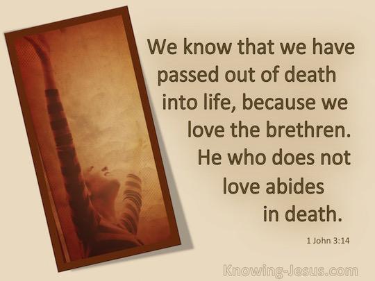 1 John 3.14