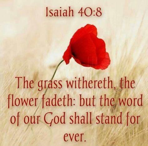Isaiah 40.8