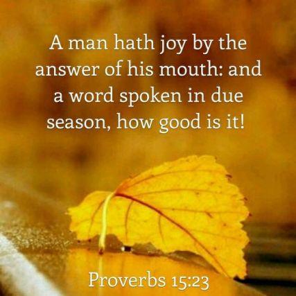 Proverbs 15.23