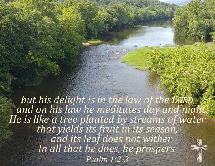 Psalm 1.2-3