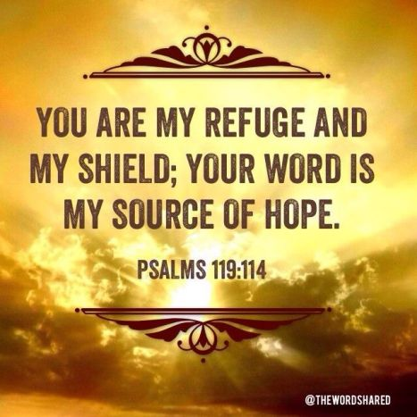 Psalm 119.114