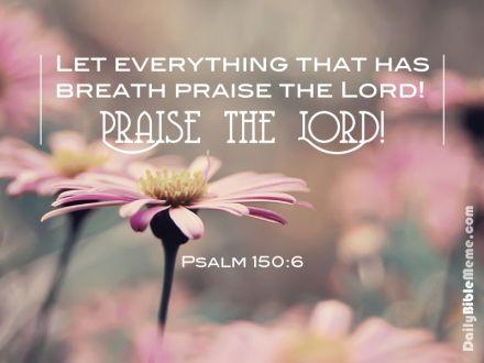 Psalm 150.6