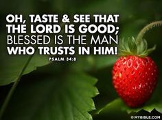 Psalm 34.8