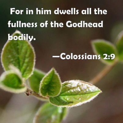 Colossians 2.9