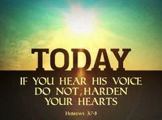 Hebrews 3.8