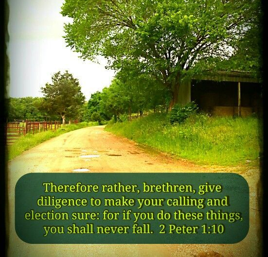 2 Peter 2.10