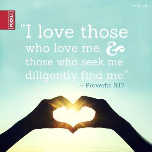 Proverbs8.17