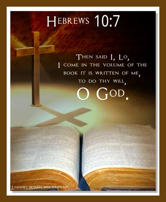 Hebrews 10.7